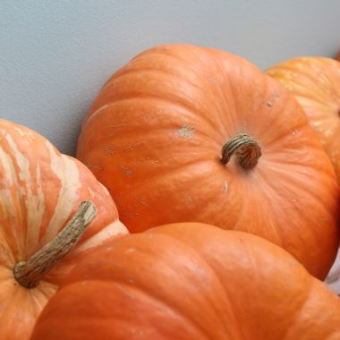 orange winter squash