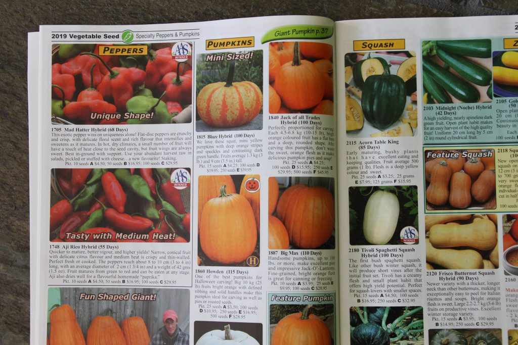 a seed catalog offering hybrid garden seeds
