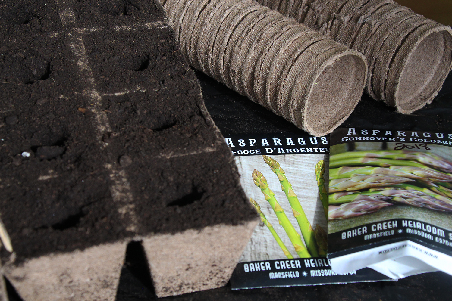 Asparagus seed packets and a tray of dirt.