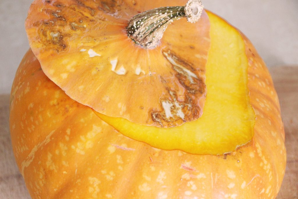 A winter squash with ugly spots that are not actually rot or mold