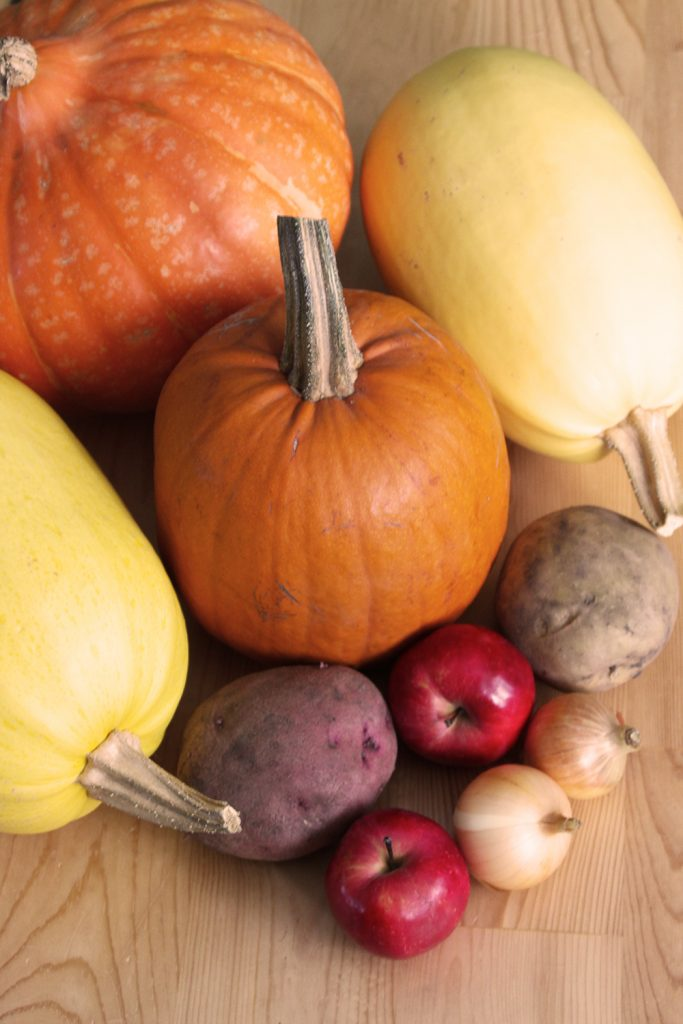 pumpkins, spaghetti squash, apples, onions, and potatoes after seven months in the root cellar