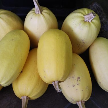 a stack of spaghetti squash - Rural Dreamsfrom our food storage