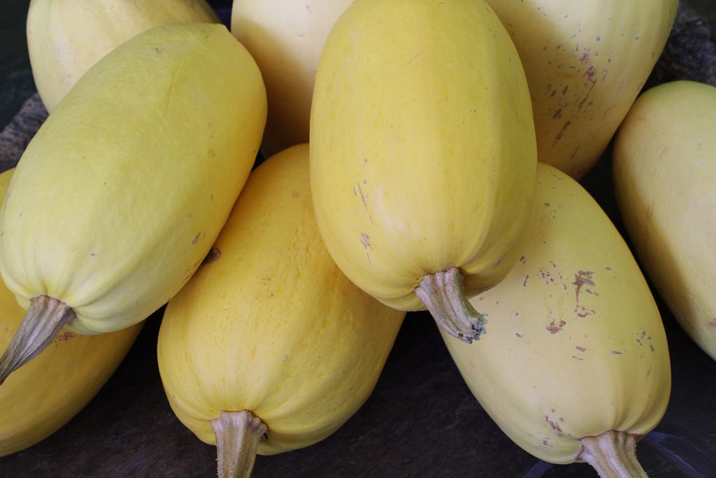 Spaghetti Squash - Food storage magic! - Rural Dreams