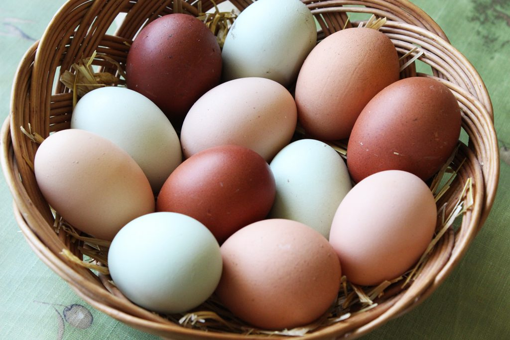 A basket of eggs - a seasonal spring food